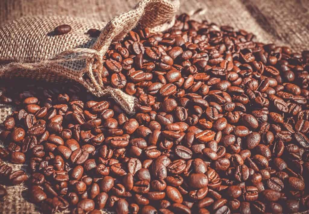 Coffee beans are very rich in caffeine